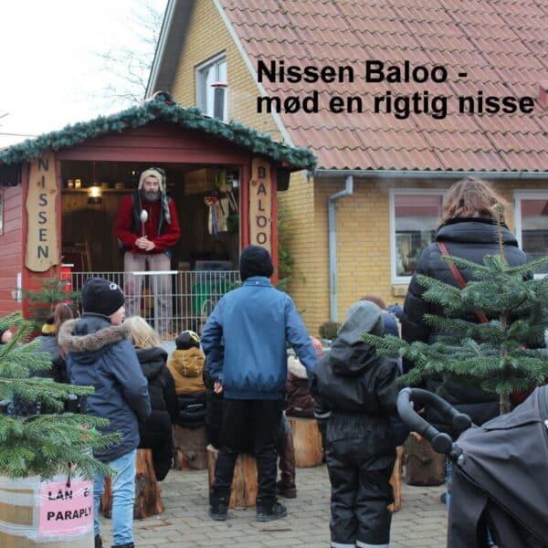 nissen baloo