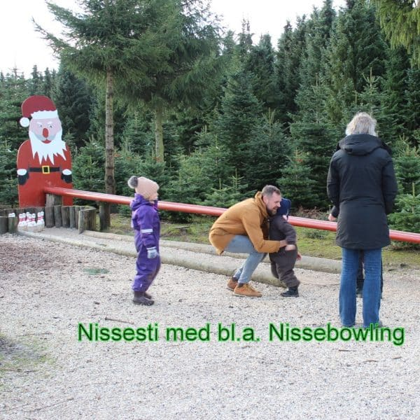nissesti2